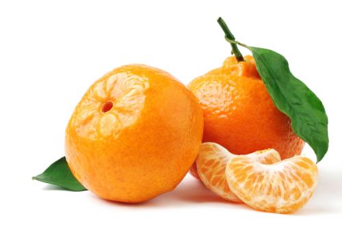 Soft Citrus