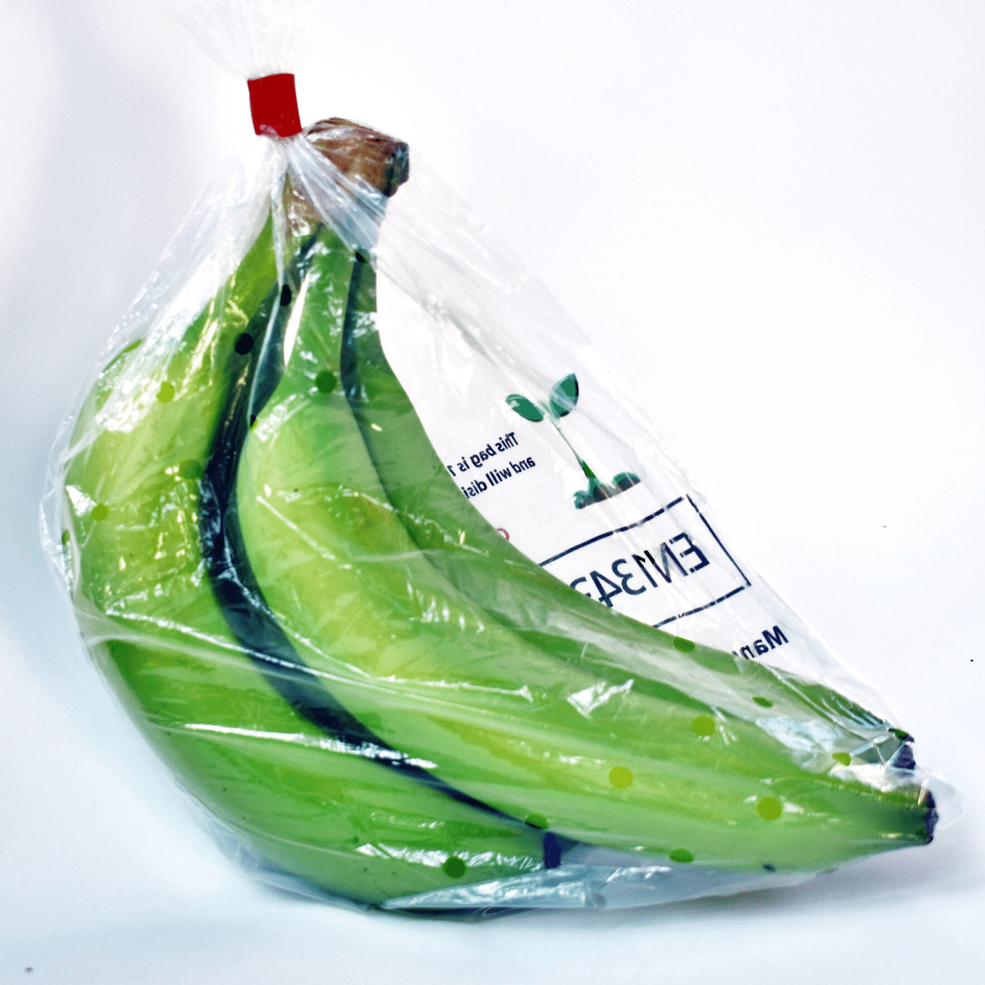 Biodegradable and Compostable Packaging